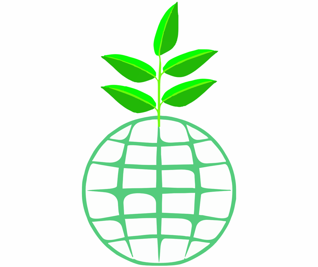 organic pure essential oils